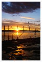 Fishing nets by lmsmith