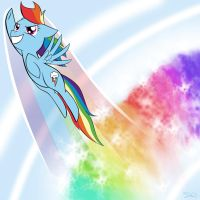 The Sonic Rainboom by steffy-beff