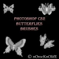 Butterflies Brushes by nOrocKnOlifE