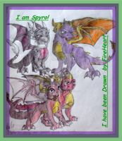 Spyro, Cynder, Ember and Flame by RainbowDragona101