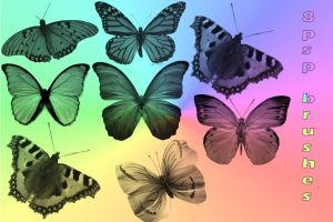 butterfly brushes for psp by Saysamia-stock