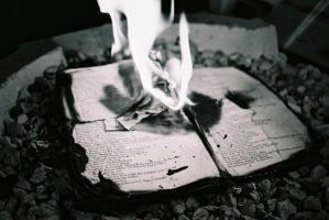 Burning Books Seven by lovephotography