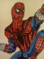 Sensational Spidey Close Up by dhbraley