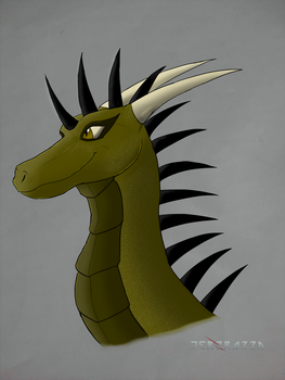 Cael redesign headshot by jerzrozza