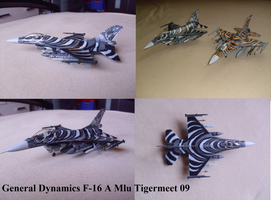 General Dynamics F 16A Mlu Tigermeet 09 by Teratophoneus