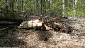 Overturned station wagon in the woods by NickACJones