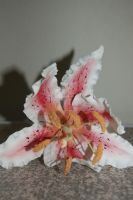 Stargazer Gum Paste Lily by JanJL
