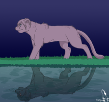 Reflection Ver.3 by Kiwitiger