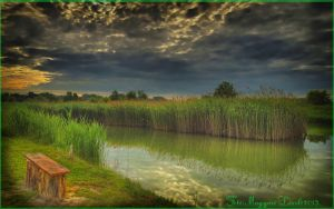 Hungarian landscapes.HDR-picture(photo series)33. by magyarilaszlo