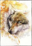 .: Wild Beauty :. by WhiteSpiritWolf