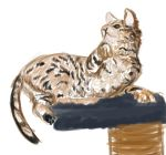 Cat Speedpaint - Day 19 by JEAikman