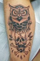 owl by jodea