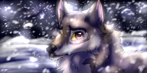 ..the Snow shines by AgentWhiteHawk