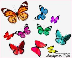 Mariposas PNG by tokiobsession