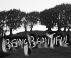 being beautiful by peripatetic-silence