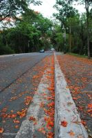 Road w the Fire-like-Flower by shalalaShaani