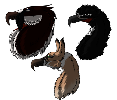 Feather mute gryphs by dragonmissy