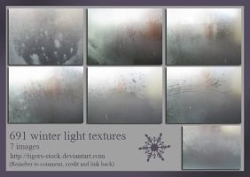 691 Winter Light Textures by Tigers-stock