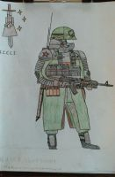 RSC Shock Trooper, 249th Mountain Corps by Toravich12