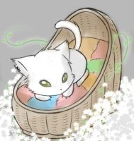 Roll the Cat - Home by FeatherHarp