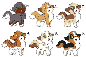 Puppy Adoptables -CLOSED- by WolfTwine