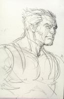 Daily Sketch Challenge Wolverine 3-25-13 by AlAyos