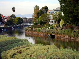 canals of venice california by puddlz