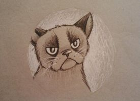 Grumpy Cat Portraiture by starbuxx