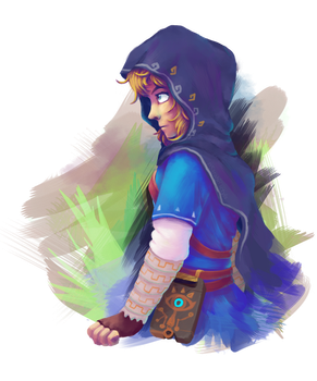 Hood Link by pSarahdactyls