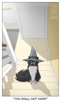 Gandalf Cat by jollyjack