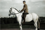 Prince on a white horse by Julanna