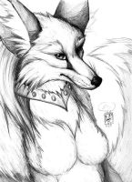 Vixen in Black and White by sebastiangreyfox