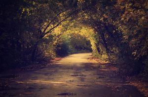 road to autumn 2 by A1ienK