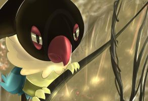 Pokemon Chatot Silvestre by Sorocabano