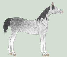 possible yearling 3 by horsecrazy2010