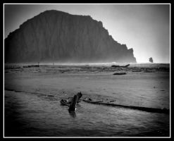 Morro Rock by TomasGarcia