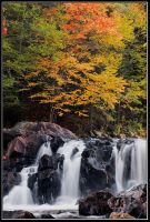 Beauty of Brook Falls by IgorLaptev