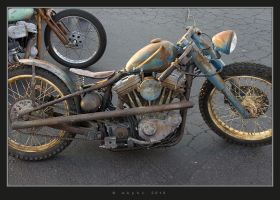 Ratty III by HogRider