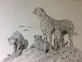 Cheetah family by ester414