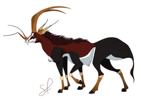 ANTelope by shayfifearts