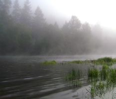 Foggy River II by snoogaloo