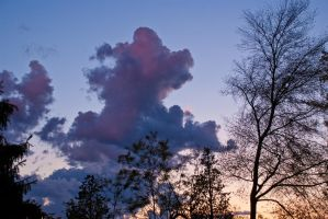 Clouds joking in the sunset sky by marcobusoni