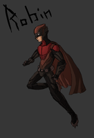 Robin (Redesign) by MegaMatrix