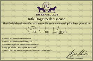 My Rifle Dog License by lighteningfox