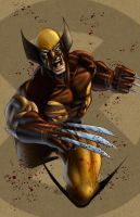 WOLVERINE by artstudio