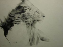Lion by frostagma