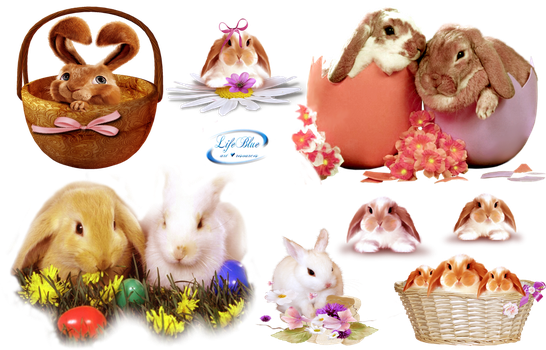 Easter bunnies - PNG by lifeblue
