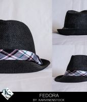 Fedora (Stock) by KarvinenStock