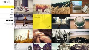 Moler - Full Screen WordPress Portfolio by wpthemes