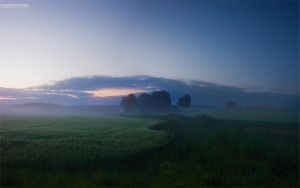 Morningmist by CalleHoglund